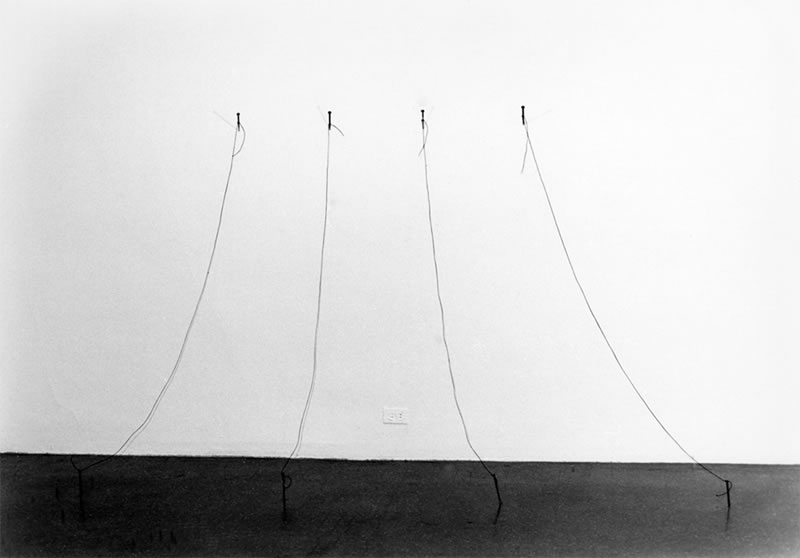 Untitled (nails), 1973