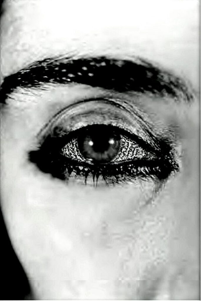 Offered Eyes from Unveiling, 1993